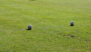 Rasenheizung: Kosten für Systeme in Stadien und Trainingsplätzen. Was kostet eine Rasenheizung, worauf müssen Vereine und Stadionbetreiber achten.
